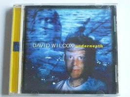 David Wilcox - Underneath