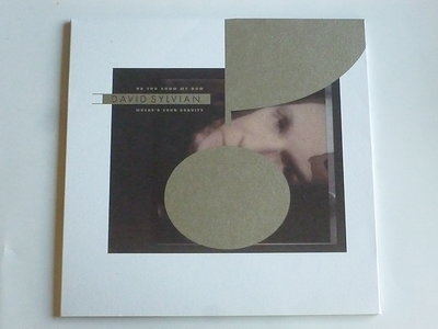 David Sylvian - Do you know me now / Where's your gravity (LP)