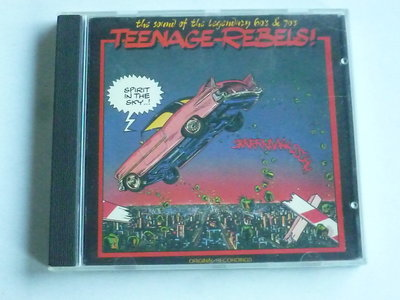 Teenage Rebels! - Spirit in the sky